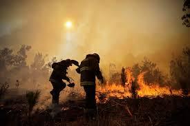 El malicioso negocio en los incendios forestales