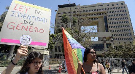 Gobierno desconoce obligación de promoción del matrimonio igualitario