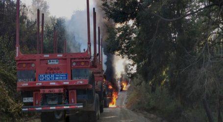 Herido a bala en ataque a camiones en Lautaro