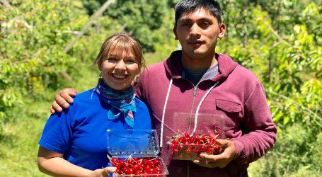 Carolina Meier es la nueva Directora Regional Indap Araucanía