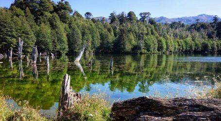 Multigremial de Araucanía pide con urgencia impulsar ley para rescatar al sector turístico de la Región