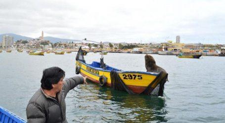 Comisión de Pesca de la Cámara rechazó prórroga para la Ley de la Jibia