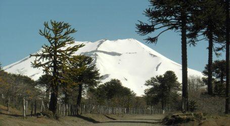 Un nuevo logro: Lonquimay es declarado zona de interés turístico