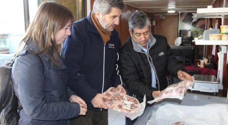 Indap junto a Cooperativa Ovicoop potencian carne de cordero gourmet