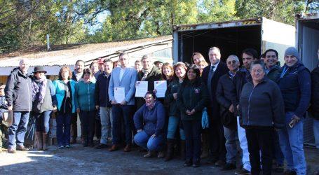 Frambueseros de la región podrán exportar gracias a alianza Framberry – Indap