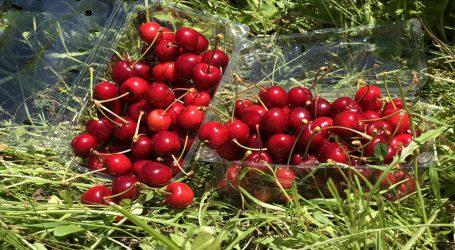 Indap entrega incentivo a pequeños agricultores afectados por mal tiempo en La Araucanía