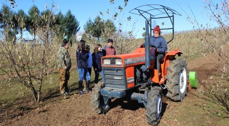 Indap abrió concurso para proyectos agrícolas