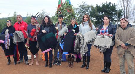 Tradiciones Mapuche se conservarán en Collipulli