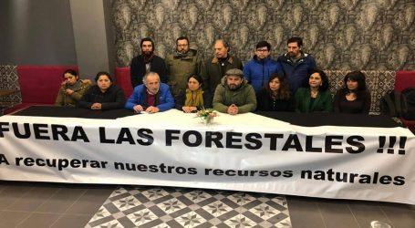 Federación Regionalista Verde Social inicia proceso de inscripción como partido en La Araucanía