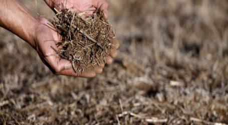 """Ministro de Agricultura: """"Estamos ante la sequía más grande de la historia del país"""""""