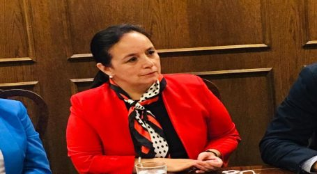 Senadora Aravena llama a la unidad política y social para cuidar la Democracia en Chile