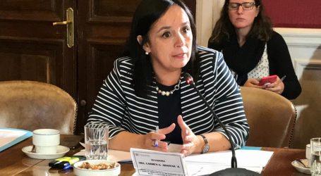 Senadora Aravena destacó medidas para restablecer el orden público y sancionar saqueos en el país