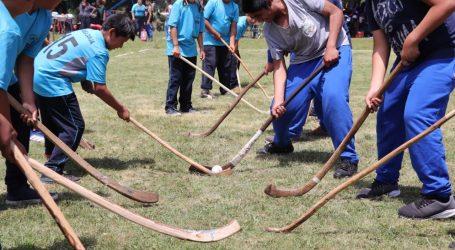 Exitoso Encuentro de Palín Escolar reunió a más de 600 niños de Padre Las Casas