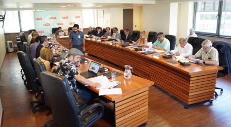 Core Araucanía aprobó $10 mil millones del FNDR para apoyar directamente a los 32 municipios de la región en crisis sanitaria por Covid-19