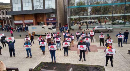 Se inicio la campaña por la opción Apruebo en La Araucanía
