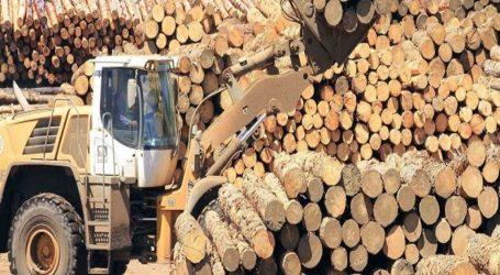 Sociedad Nacional Forestal condena hechos de violencia en macrozona sur y exige a las autoridades el retorno del estado de derecho en la zona
