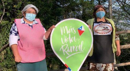 Indap abre concurso especial de inversiones para agricultores Mapuche