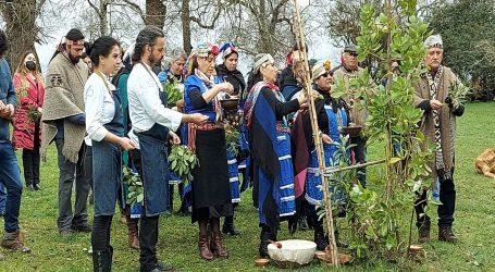 Iniciativa turística mapuche apoyada por Conadi será difundida por chef internacional en programa de televisión gastronómico