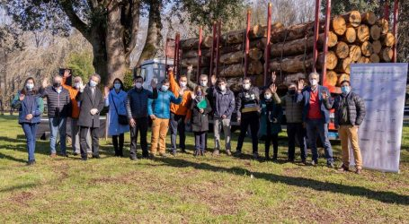 Gremios forestales y pymes madereras presentan campaña para prevenir comercio ilegal de madera y daño al medio ambiente
